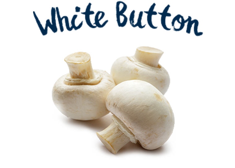 White Button