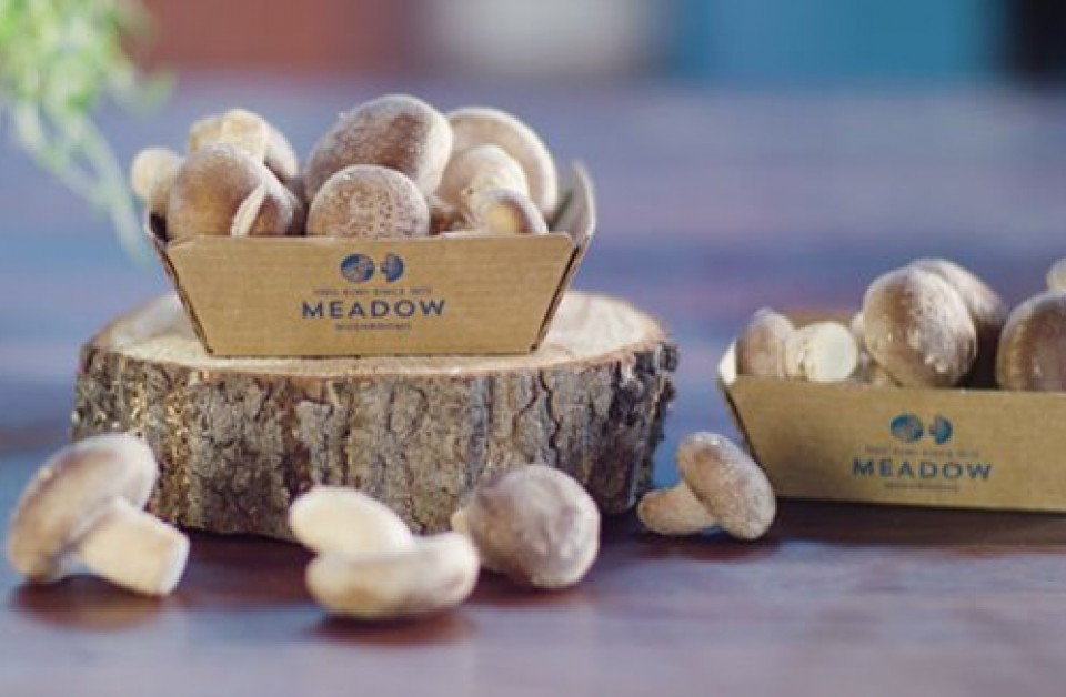 Meadow Mushrooms: Reuse, recycle or compost by 2025
