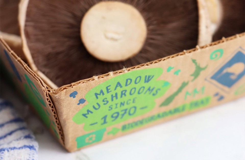 Meadow Mushrooms: Small changes can make a big difference.