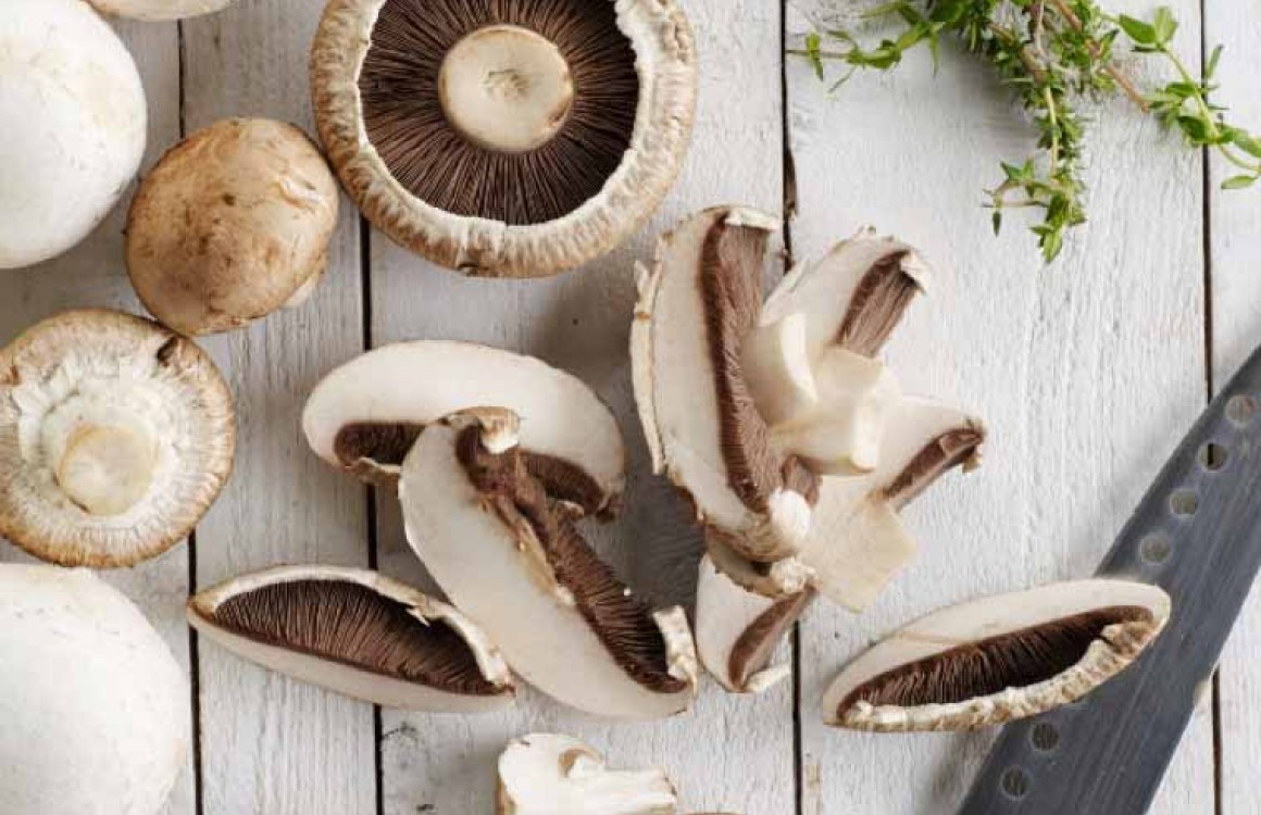 Meadow Mushrooms: How to Eat
